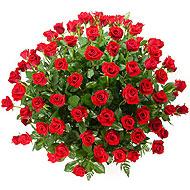 鲜花礼盒-绮梦