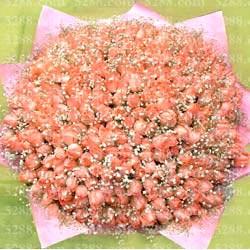 送花-365��祝福