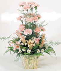 鲜花网站-远方的祝福