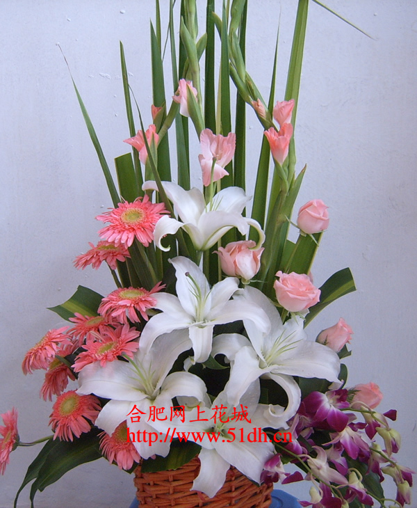 端午节鲜花-花蓝