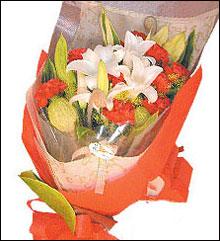 端午节鲜花-温馨五月情