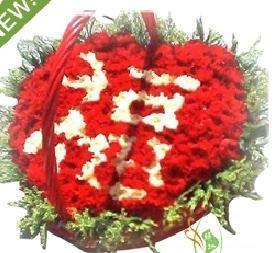 预订鲜花-祝福