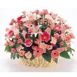 订鲜花-祝您健康