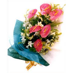鲜花网站-特别的祝福