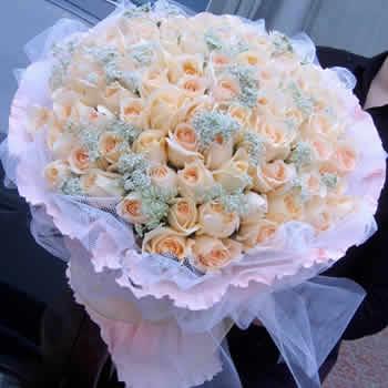 鲜花快递网-心与心相依
