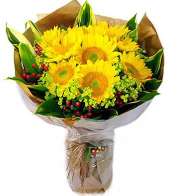送花-我的小太阳