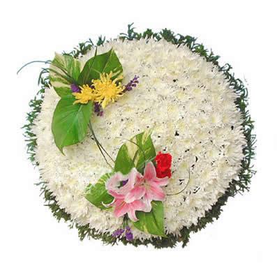 祭奠鲜花-英魂长存