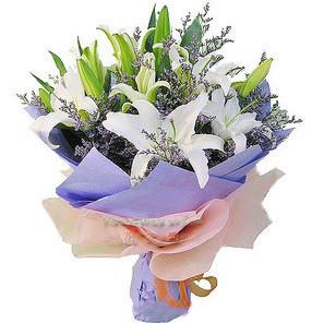 订花服务-美丽爱情