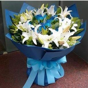 预订鲜花-蓝色的梦