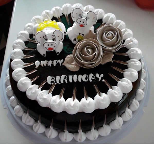 鲜奶蛋糕dangao-宠物猪