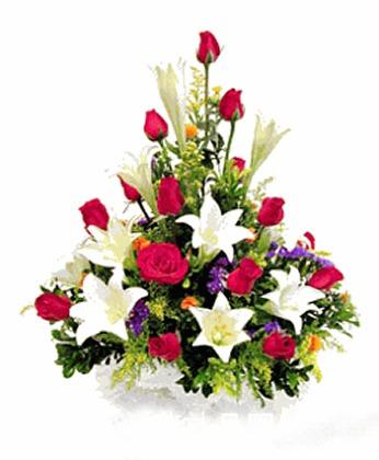 鲜花礼品-欣欣向荣