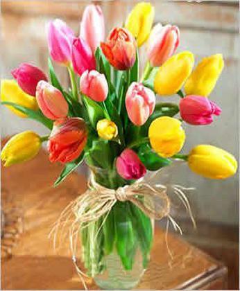 花店-迷人的春色