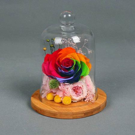 预订鲜花-永生花 单朵彩虹玫瑰