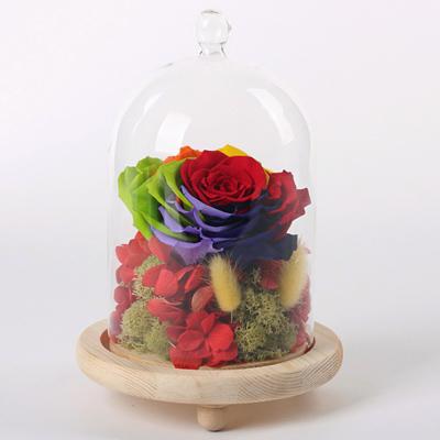 送花-玻璃罩彩虹花 红绣球