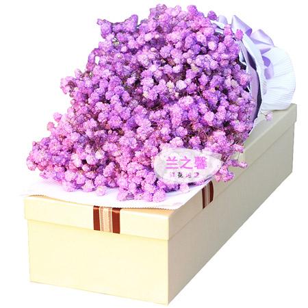 端午节鲜花-紫色浪漫
