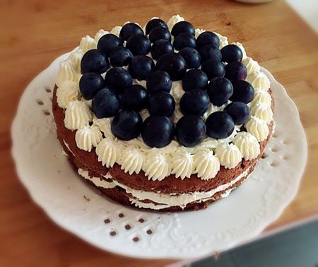 送蛋糕-蓝莓花花世界