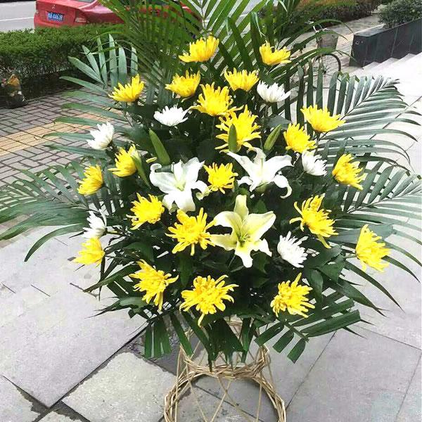 鲜花网站-悲悯