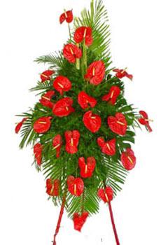 大连鲜花:庆典花篮