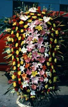珠海网络订花:庆典花篮