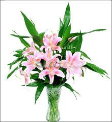 嘉兴鲜花:谢谢你的爱