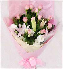 迭部鲜花-红粉丽人