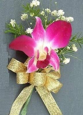 无锡鲜花:兰花胸花