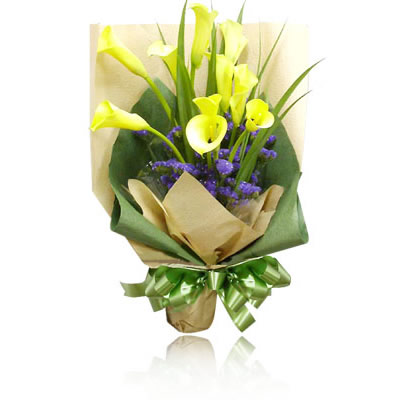 海阳网上订花-似那低头的温柔