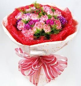 苏州网上订花:献给母亲