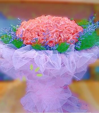 江门江门送花:我的依恋