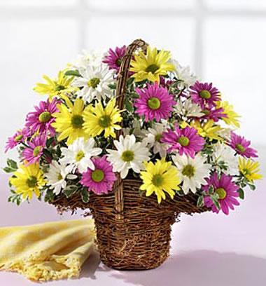 嘉兴订花:祝福相伴