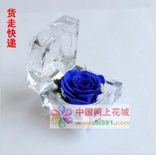 瑞安鲜花网:戒指盒保鲜花-蓝玫瑰