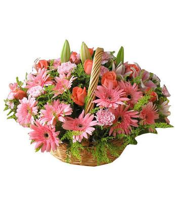 西安鲜花:特别的今天