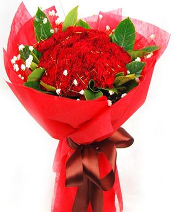 瑞安瑞安送花:温馨无比