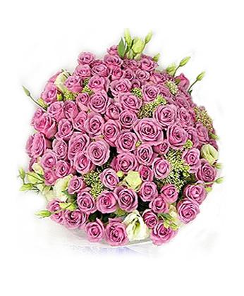 迭部鲜花-我非常爱你