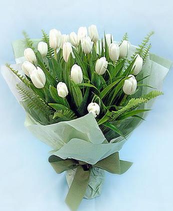 宁波鲜花:爱之初