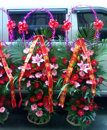 无锡鲜花:开业好彩头