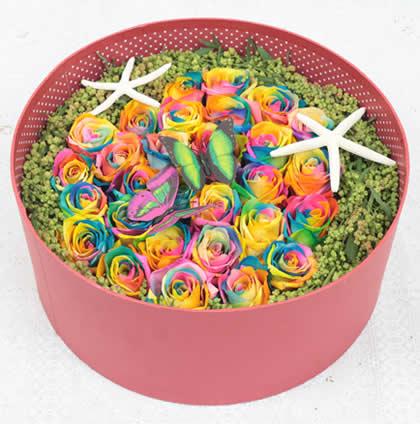 哈尔滨永生花:彩虹玫瑰 最初的爱