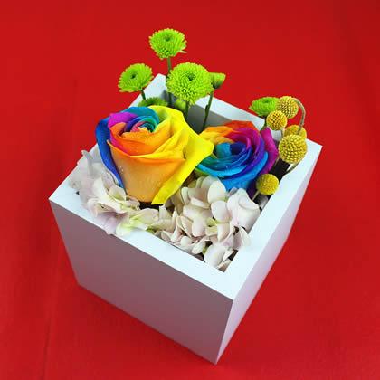 西安永生花:彩虹玫瑰 真爱一生