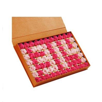 烟台肥皂花:肥皂花-1314 A款