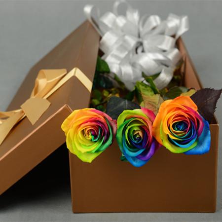 拉萨永生花:彩虹玫瑰-永恒