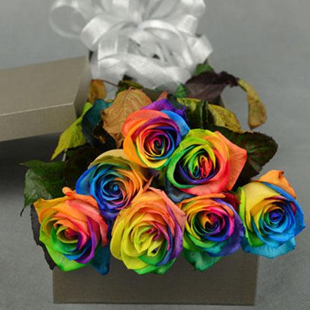 嘉兴永生花:彩虹玫瑰-爱的代价