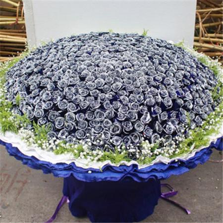 义乌花店:蓝色梦之恋