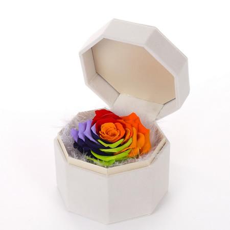 拉萨永生花:保鲜花 单朵七彩