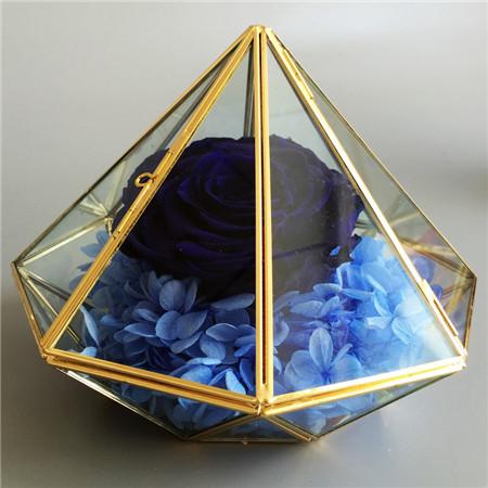 无锡鲜花:钻石款蓝色