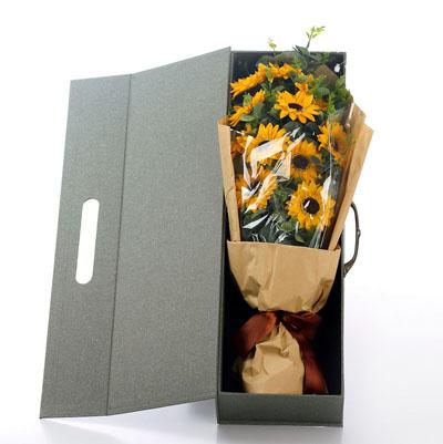 西安肥皂花:香皂花-向日葵