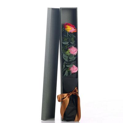 嘉兴肥皂花:香皂花-1朵彩虹2朵粉玫瑰