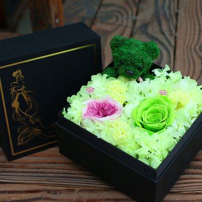 苏州永生花:永生花 绿色玫瑰