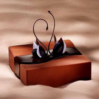 隆尧鲜花-黑天鹅