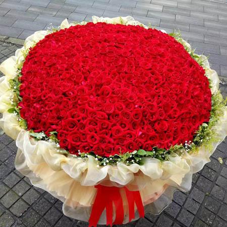 宁波网络订花:国色天香